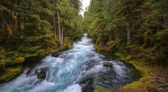 rio agua mágica